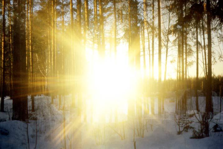 c135ef8e76 Un hombre que mantiene los ojos fijos en el sol, termina ciego. Un hombre  que sólo busca la Luz y deja sus